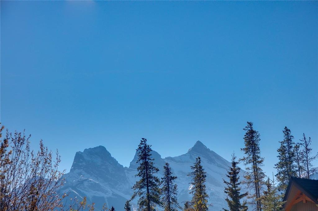 Picture of 501 Silvertip PT