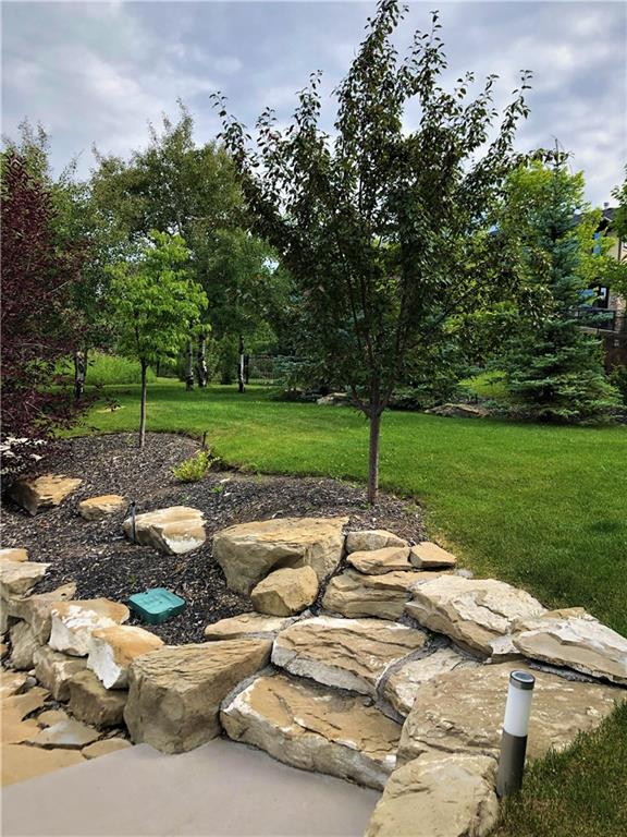 Picture of 40 SPRING WILLOW TC SW