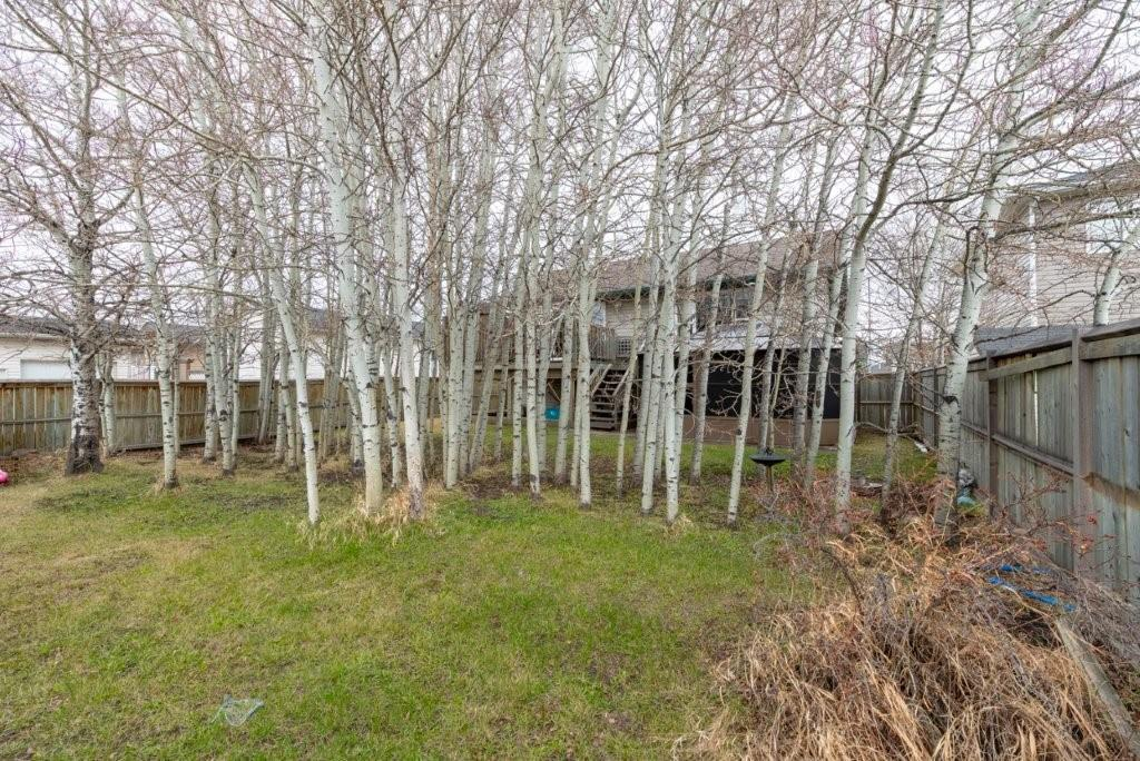 Picture of 78 Westpoint DR