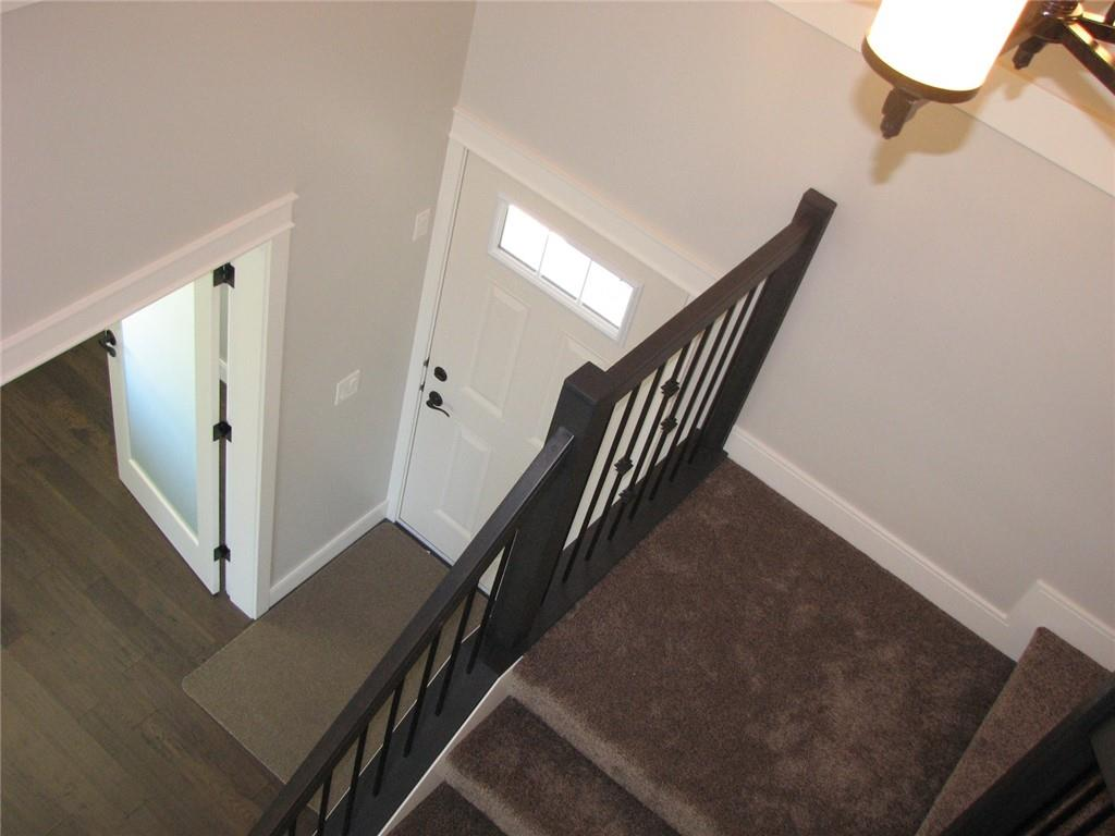 Picture of 21 Vireo AV
